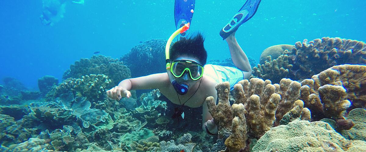 wisata pulau kelapa kepulauan seribu utara