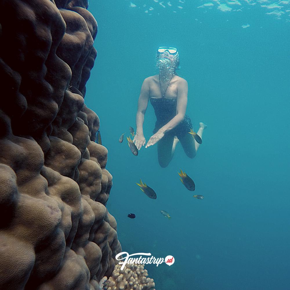 Wisata Open Trip Dan Private Trip Pulau Tunda 2021 Fantastrip Indonesia