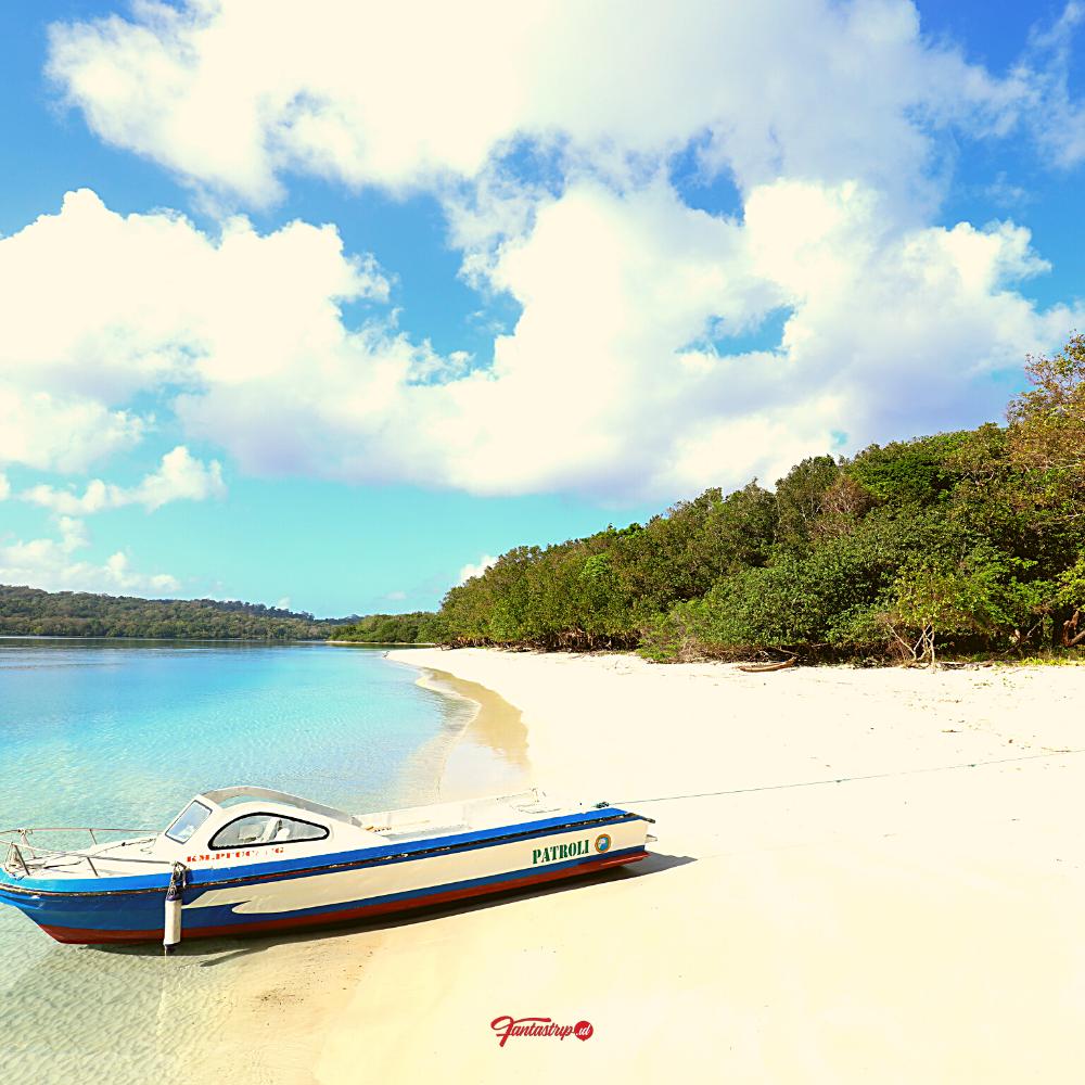 wisata-open-trip-private-trip-pulau-peucang-ujung-kulon
